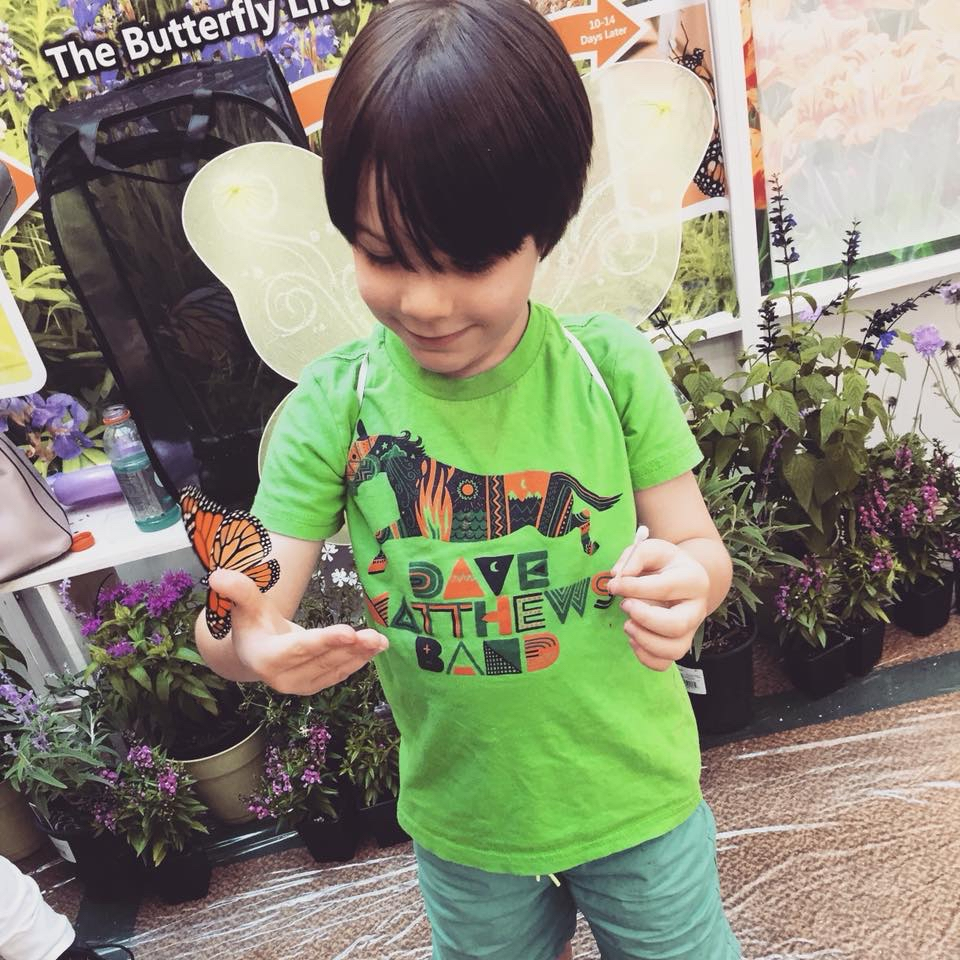 My little guy at a butterfly exhibit. He couldnt wait to put on his wings and be a butterfly rescue robot. - 10155706608203124.jpeg